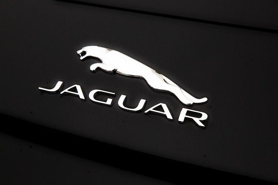 jaguar-1076207_960_720